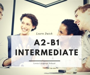 study-dutch-utrecht Course: A2 - B1 Intermediate